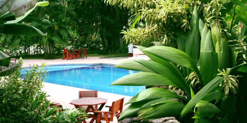 Improve Your Summer Pool Experience with a Spring Pool Landscaping Project